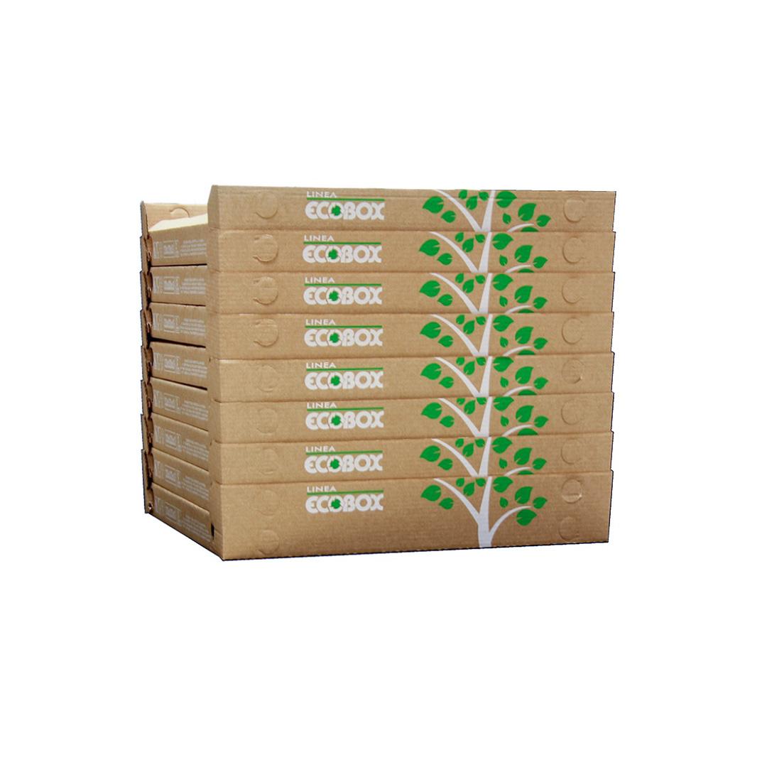 """Ecobox per Pizza impilabili tipo """"Cubo"""""""
